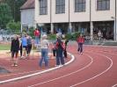 14.06.2008 Mittelfränkische Meisterschaften - Herzogenaurach_2