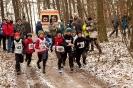 23.01.2011 Crosslauf - Zirndorf_2