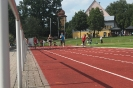30.06.2011 Steffi-Fuchs-Gedächtnissportfest - Dinkelsbühl_2