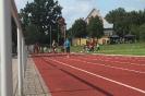 30.06.2011 Steffi-Fuchs-Gedächtnissportfest - Dinkelsbühl_4