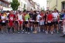 29.07.2012 Jubiläumslauf Stadt Zirndorf - Zirndorf_8