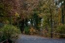 10.10.2015 Stadtmeisterschaften im Laufen - Zirndorf_4