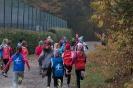 12.11.2016 Waldlauf - Büchenbach_7