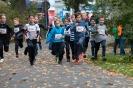 07.10.2017 Stadtmeisterschaften im Laufen - Zirndorf_136