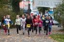 07.10.2017 Stadtmeisterschaften im Laufen - Zirndorf_22