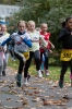 07.10.2017 Stadtmeisterschaften im Laufen - Zirndorf_25