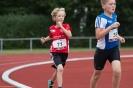 15.07.2017 Kreismeisterschaften Mehrkampf - Zirndorf_75