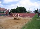 14.06.2008 Mittelfränkische Meisterschaften - Herzogenaurach_19