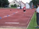 14.06.2008 Mittelfränkische Meisterschaften - Herzogenaurach_20