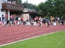 14.06.2008 Mittelfränkische Meisterschaften - Herzogenaurach_22