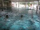 26.06.2008 Schwimmabnahme für das Sportabzeichen - Zirndorf_6