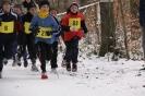 15.02.2009 Crosslauf - Zirndorf_2