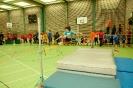 06.02.2010 Hallensportfest - Wendelstein_2