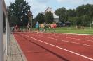 30.06.2011 Steffi-Fuchs-Gedächtnissportfest - Dinkelsbühl_6
