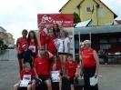 06.07.2013 Kreismeisterschaften im 4-Kampf - Zirndorf_8