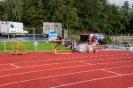 28.08.2014 Renovierung des Sportplatzes - Zirndorf_20