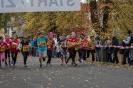 10.10.2015 Stadtmeisterschaften im Laufen - Zirndorf_8