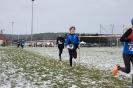 25.01.2015 Mittelfränkische Crosslaufmeisterschaften - Veitsbronn_16
