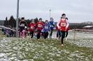 25.01.2015 Mittelfränkische Crosslaufmeisterschaften - Veitsbronn_19