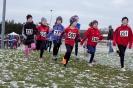 25.01.2015 Mittelfränkische Crosslaufmeisterschaften - Veitsbronn_20