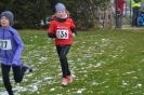 25.01.2015 Mittelfränkische Crosslaufmeisterschaften - Veitsbronn_2
