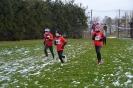 25.01.2015 Mittelfränkische Crosslaufmeisterschaften - Veitsbronn_3
