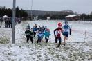 25.01.2015 Mittelfränkische Crosslaufmeisterschaften - Veitsbronn_5