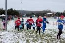 25.01.2015 Mittelfränkische Crosslaufmeisterschaften - Veitsbronn_8