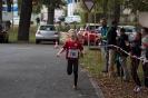 08.10.2016 Stadtmeisterschaften im Laufen - Zirndorf_11