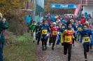 12.11.2016 Waldlauf - Büchenbach_10