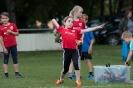 19.06.2016 Kreismeisterschaften Mehrkampf - Ipsheim