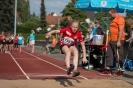 27.07.2016 Leichtathletik Meeting - Höchstadt_12