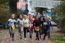 07.10.2017 Stadtmeisterschaften im Laufen - Zirndorf_23