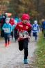 11.11.2017 Waldlauf - Büchenbach_2
