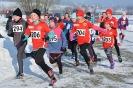 22.01.2017 Mittelfränkische Cross-Meisterschaften - Eckental_12