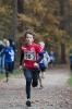 10.11.2018 Waldlauf - Büchenbach_13