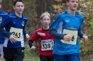 09.11.2019 Waldlauf - Büchenbach