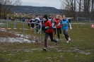 10.02.2019 STUDEX Crosslauf - Eckental_17
