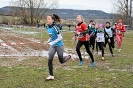 10.02.2019 STUDEX Crosslauf - Eckental_18