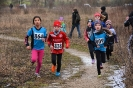 10.02.2019 STUDEX Crosslauf - Eckental_1