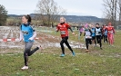 10.02.2019 STUDEX Crosslauf - Eckental_20
