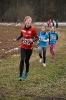 10.02.2019 STUDEX Crosslauf - Eckental