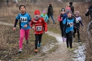 10.02.2019 STUDEX Crosslauf - Eckental_2